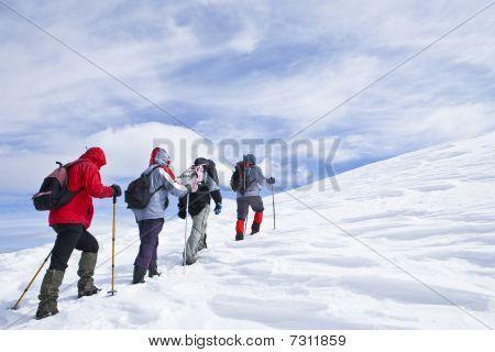 Alpine Expedition