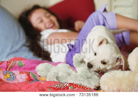 Young girl on bed with puppy