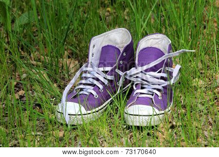 pair of gymshoes in green grass