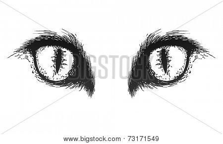 Hand drawn cat eyes. Vector eps 8