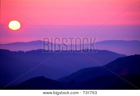 Sunset Marin