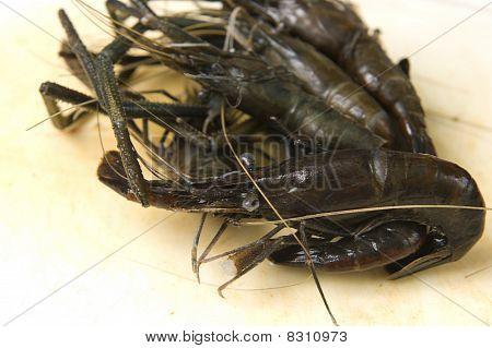 Raw river shrimps - delicious sea-fruits food poster