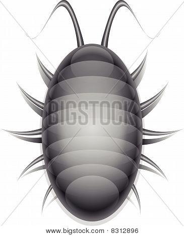 Bug illustration