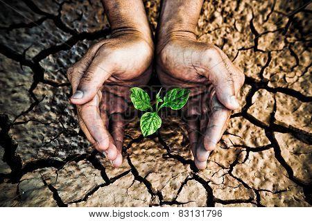 Environmental problem