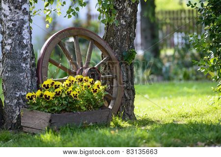 Cart Wheel In The Garden