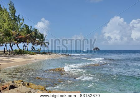 Gros Islet in st lucia