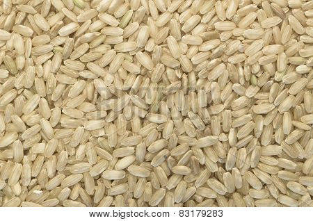 Wholemeal Rice Grains