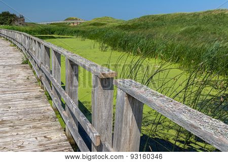 A walkway over the marsh along the sand dunes in Prince Edward Island National Park, Cavendish, PEI, Canada.