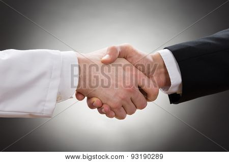 Doctor And Businessman Shaking Hand