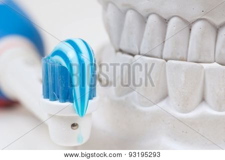 Dental mould, isolated on a white background poster