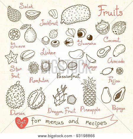 Set drawings of fruit for design menus, recipes and packages product.