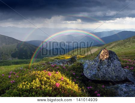 Mountain landscape with a rainbow over flowers.  Collage of two frames. Art processing photos