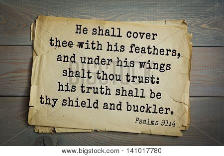Top 500 Bible verses. He shall cover thee with his feathers, and under his wings shalt thou trust: his truth shall be thy shield and buckler.  Psalms 91:4