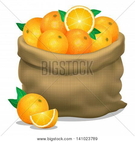 Illustration of a sack of oranges on a white background. Vector icon