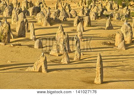 Pinnacles in the desert of Nambung National Park Western Australia Australia