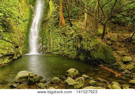 Waterfall at Oahu Lookout Kaikoura Coast South Island New Zealand