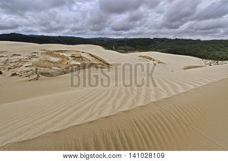 Te Paki Sand Dunes North Island New Zealand