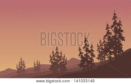 Silhouette of scenery spruce in hills vector illustration