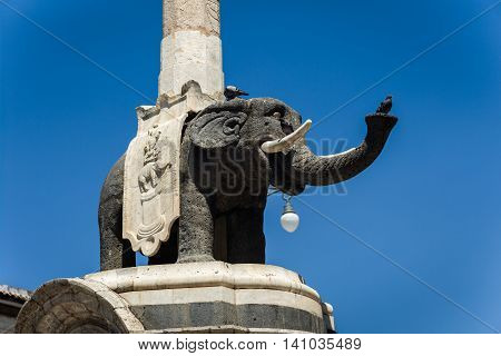The Elephant Statue In Catania, Sicily