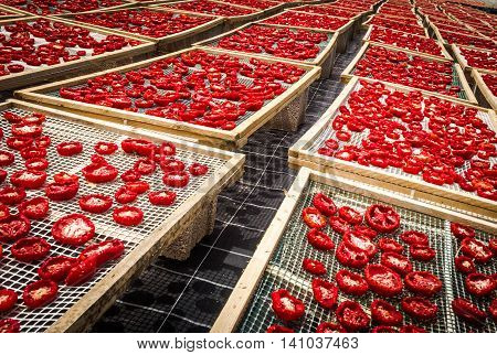 Sun Dried Tomatoes In Sicily