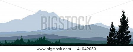 beauty mountain with pine tree silhouette on white background