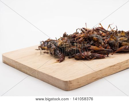Fried insects. Protein rich food. Thai street food.