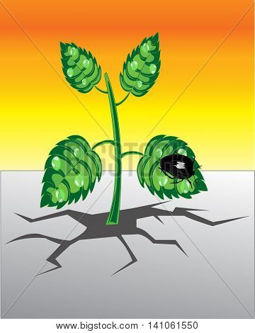 The Plant rising from rift in the land.Vector illustration