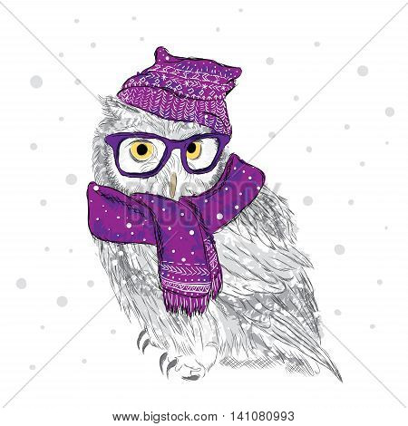 Owl in a cap and scarf were drawn by hand. Bird clothing.
