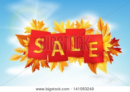 Autumn sale tags with colorful fall leaves on the blue sky background. Vector illustration