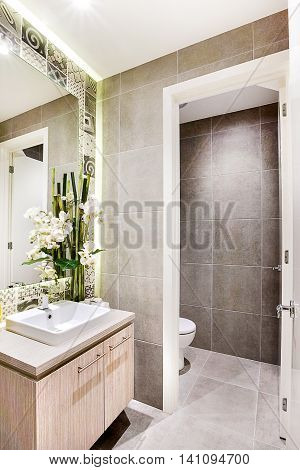 Modern Washroom With Fancy Decoration Items Beside The Mirror