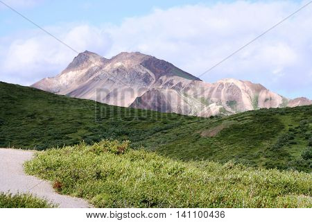 A view of a mountain range from inside Denali National Park and Preserve