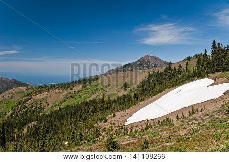 Hurricane Ridge mountains with snow in Olympic National Park Washington State uSA