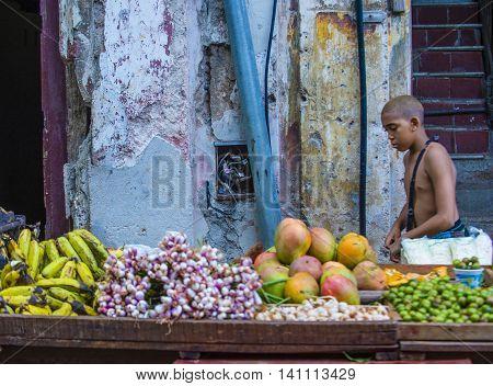 HAVANA CUBA - JULY 18 : A Cuban fruit seller in old Havana street on July 18 2016. The historic center of Havana is UNESCO World Heritage Site since 1982.