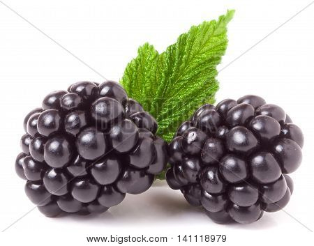 blackberry with leaf isolated on a white background closeup.