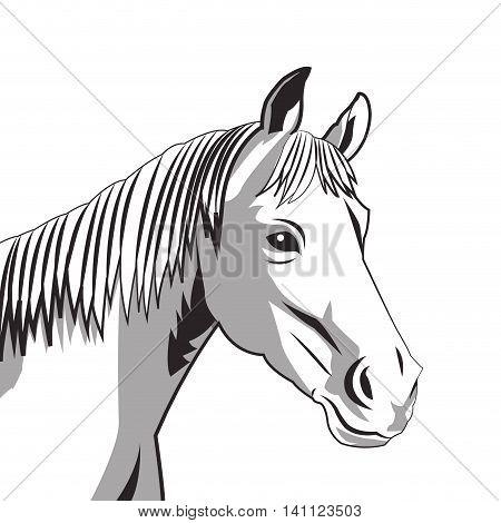 flat design horse drawing icon vector illustration