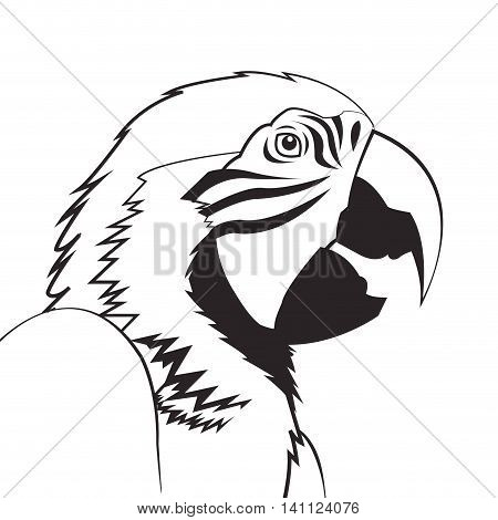 flat design parrot drawing icon vector illustration