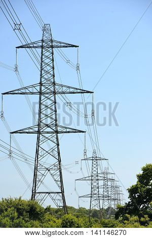 Electricity pylons in trees uk power network