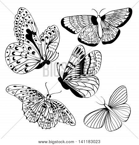 Set of butterflies Black silhouettes. Butterfly isolated on white background. Graphic icons of butterflies. Vector illustration