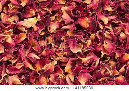Organic dry Rose Damask petals (Rosa damascena). Macro close up background texture. Top view.