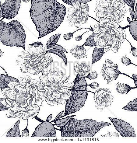 Black and white vector background with flower Chinese plum. Floral pattern with leaves flowers and branches of the tree Chinese plum. Design paper wallpaper and fabrics. National Chinese plant.
