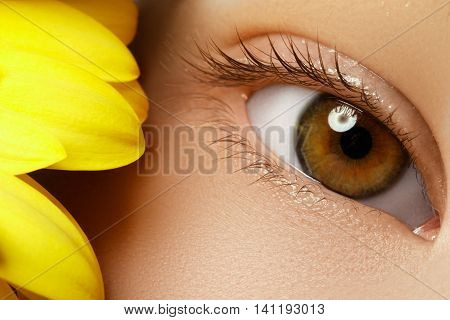 Close-up Macro Of Beautiful Blue Female Eye With Perfect Shape E