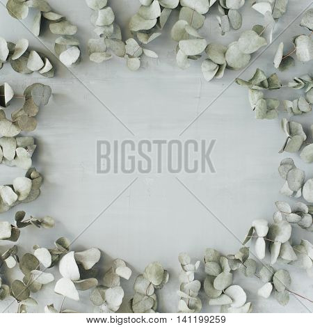 round frame wreath pattern with eucalyptus branches and leaves isolated on concrete background. flat lay top view