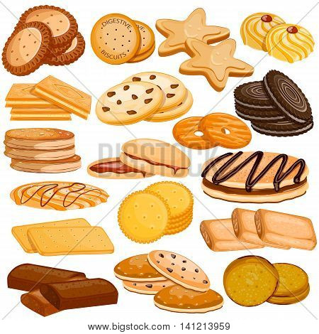 vector illustration of Assorted Biscuit and Cookies Food Collection