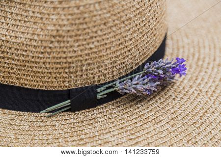 Twig of fresh purple fragrant lavender inserted in black ribbon on wicker straw flaxen hat poster