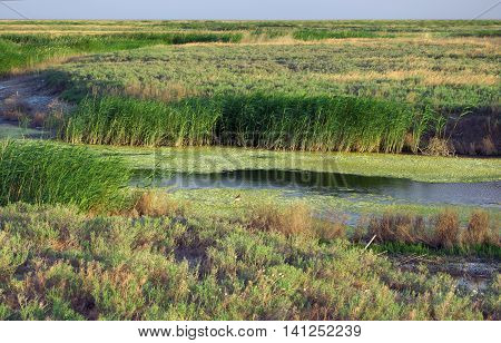 View of the steppe in the Volgograd region of Russia poster
