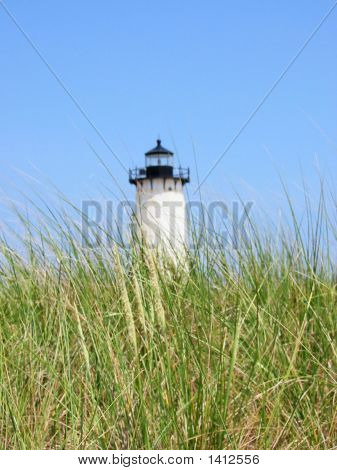 Edgartown Light In The Grass