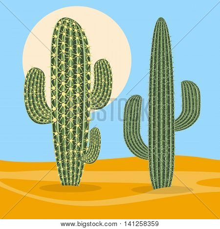 Different types desert plant nature cactus. Vector illustration.