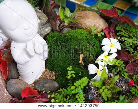 Closeup of mini garden with small trees and flowers