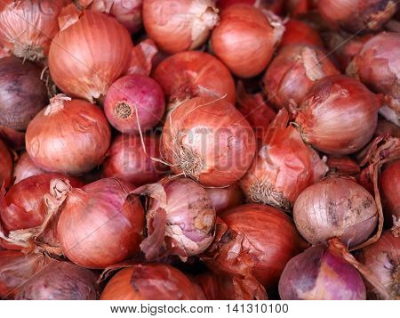 Shallots pile or stack of Shallots in market