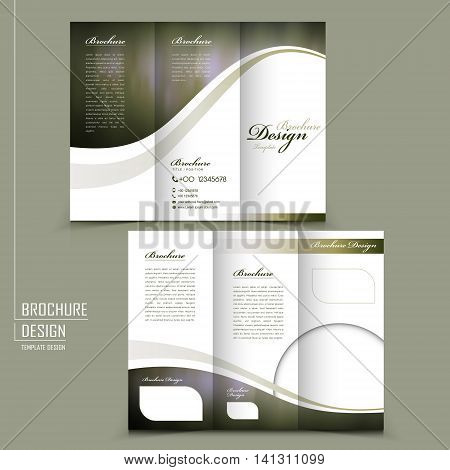 Graceful Tri-fold Brochure Template Design